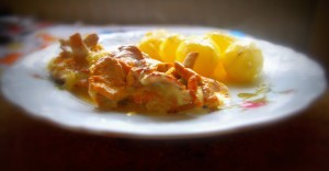 Kurczak w sosie kurkowym